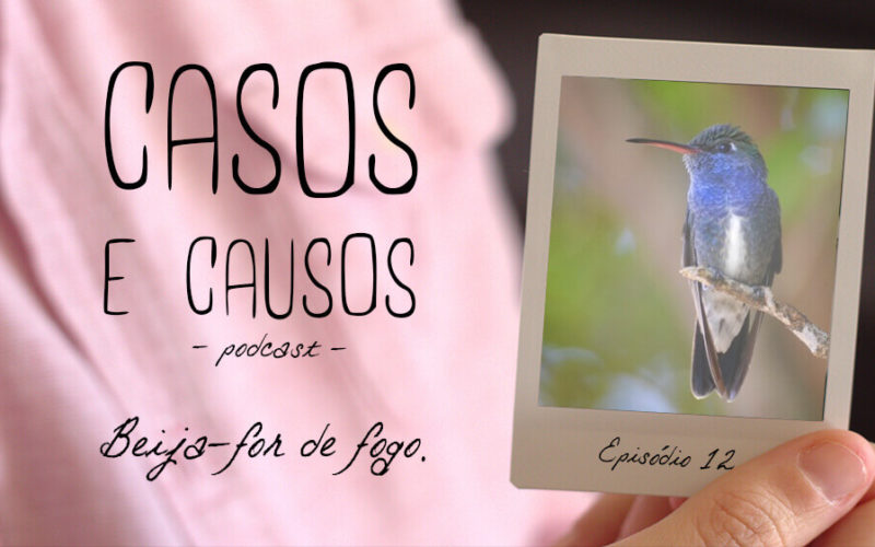 Casos e Causos #12 - Beija-flor de fogo
